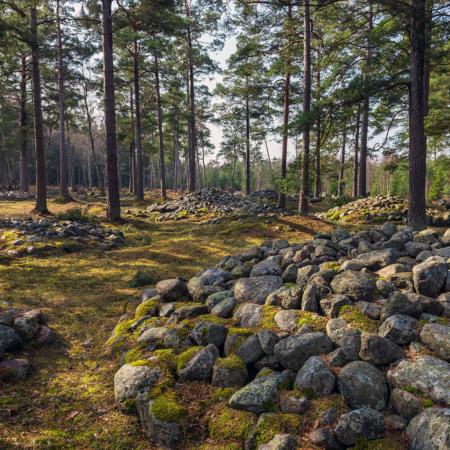 Gravfältet Trullhalsar på Gotland
